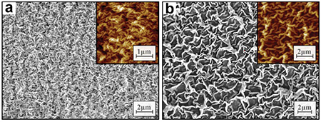 SEM and AFM (insets) images of (a) Teflon wrinkles on Polyshrink and (b) Teflon wrinkles on shrink w