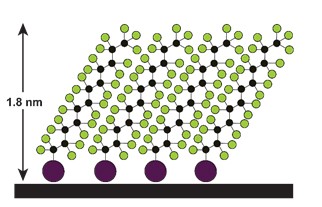 Self-assembled monolayer of perfluorinated molecules